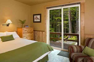 Forest View Suite at The Lodge